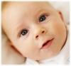 Свежие младенцы, целиком или частями, по сходной цене