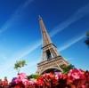 Чип не увидел Париж, но умер: французы забраковали электронные «досье»