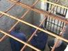 Сотни новых тюрем в России хотят построить в ипотеку