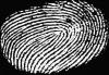 Россияне с 2015 года будут сдавать отпечатки пальцев при получении шенгенских виз