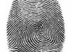 Жителям Калининградской области потребуется биометрическая идентификация при въезде в Польшу