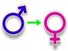 Британским детям могут разрешить менять пол