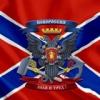За что сражается ополчение Новороссии