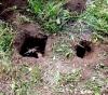 Как сделать подземный очаг, землянку и скрон в лесу.
