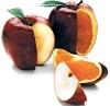 """Эффективный способ геноцида: крашеные яблоки и """"химическое"""" молоко как средства уничтожения"""