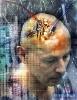Минобороны США вводит в использование мозговые чипы
